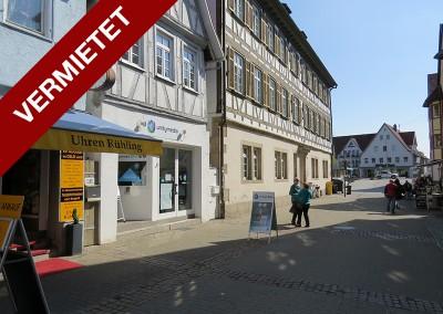 Max-Eyth-Straße 55 – Kirchheim / Teck
